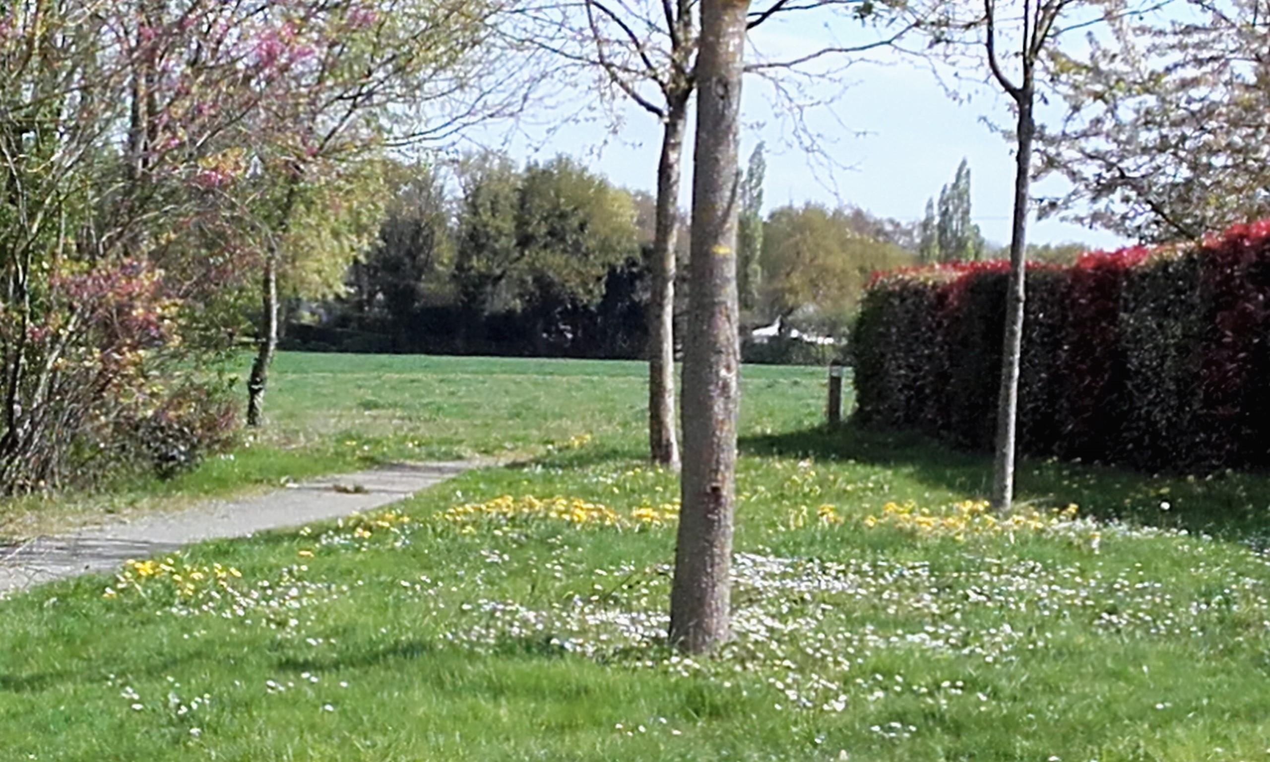 Le Bois de la Touche - Photo 1