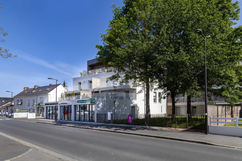 Villa Athéna - Photo 3