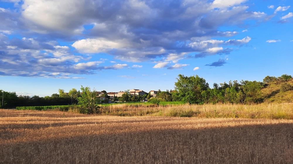 Image Quelles sont les spécificités de la construction sur terrain agricole ?