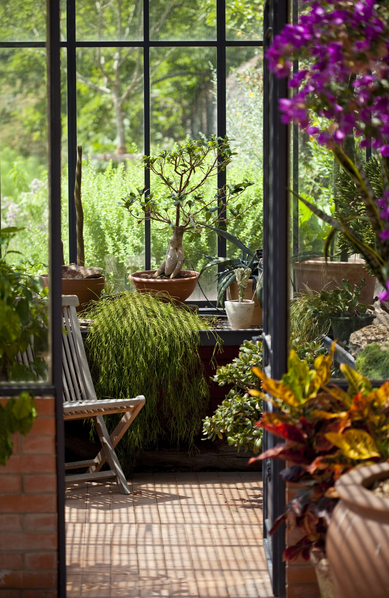 jardin d'hiver veranda perion