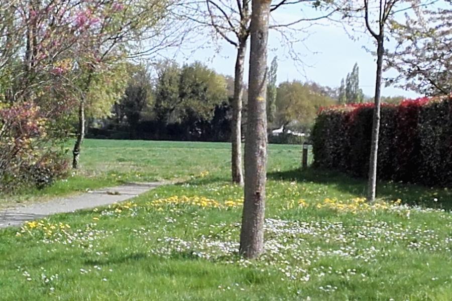 Le Bois de la Touche - Photo