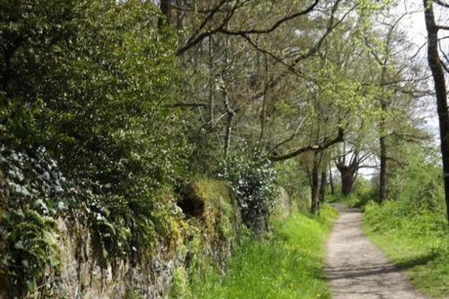 Coteau de la Margerie - Photo 1