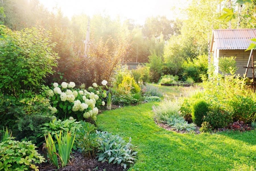 installer jardin perion